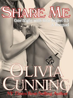 share me (one night with sole regret 0.5)